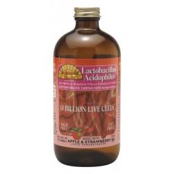 Lactobacillus Acidophilus - Apple Strawberry 473ml